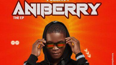 L Koncept - Aniberry